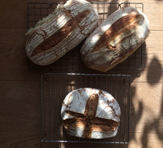 Three loaves of fresh homemade sourdough